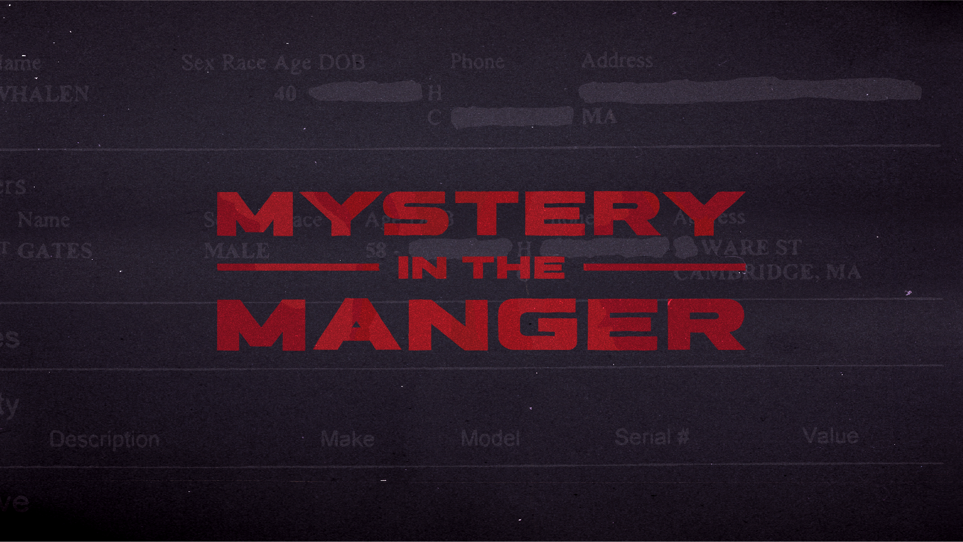 Mystery In The Manger